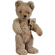 Schuco Yes/No Mohair Bear - 9 Inch
