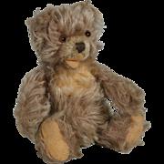 Steiff Zotty Teddy Bear 7 Inches