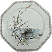 Antique English Swans Plate TC Brown Westhead and Moore