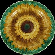 Antique Majolica Sunflower Plate Wedgwood