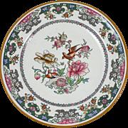 19th English birds Plate Minton