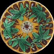 Majolica Passiflora Wedgwood Plate