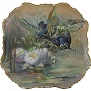 Antique Porcelain Bird & Water Lily