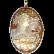 Antique Victorian 14K Cameo Shell Moon Sun Stars Owl Brooch Pin Pendant