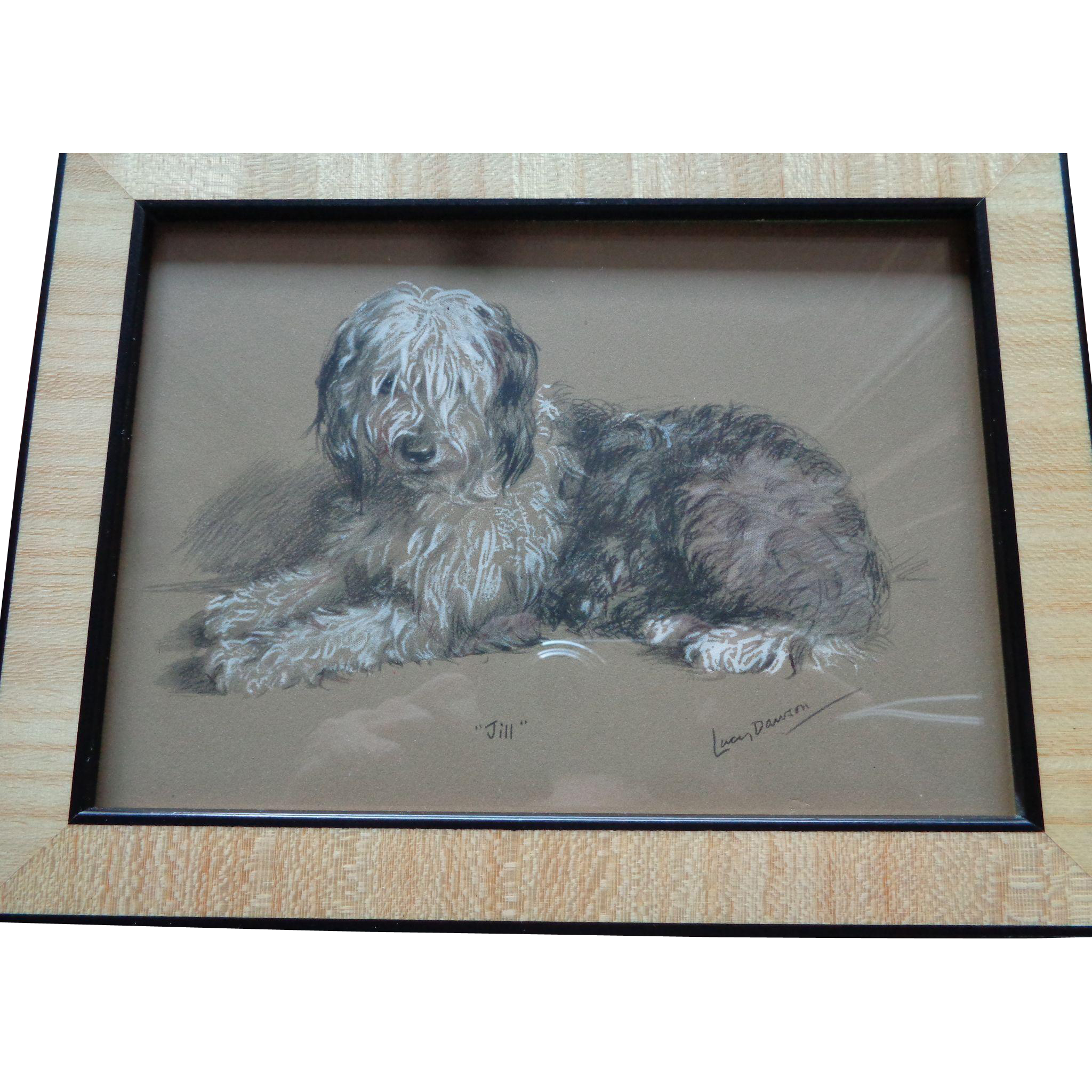 Lucy Dawson Hand Colored Print Of Sheep Dog Signed 1930s
