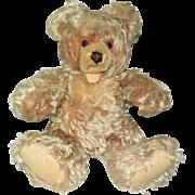 "Vintage 15"" Lovable Steiff Zotty Bear"