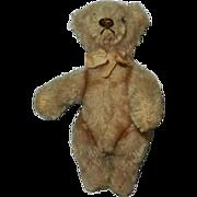 "Vintage 6"" Steiff Original Teddy with Original Bow"