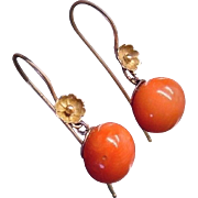 Antique Noble Salmon Mediterranean Natural Undyed Coral 9ct Gold Earrings Victorian Etruscan Revival c.1880 French Wires Precious Gemstone Tomato Red Orange Drop Dangle