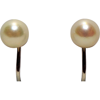 Lovely 14K White Gold & Genuine Pearl Screwback Earrings