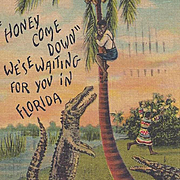 Black Americana and Native American Seminole Post Card