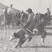 Photograph of Rodeo With Young Cowboy Riding Calf