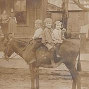 RPPC 3 Adorable Children on a Burro