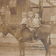 RPPC 3 Adorable Children on a Burro