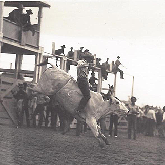 RPPC Doubleday Rodeo Steer Riding