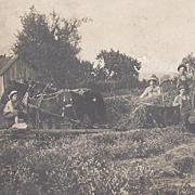 Real Photo Postcard Farm Haying Scene