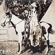 Native American Indian Northern Plains Chief