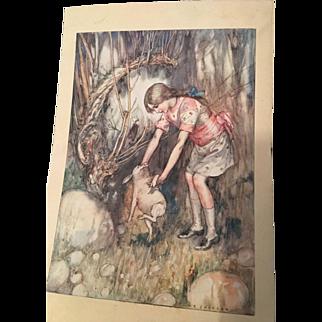 Wonderful collection of original Alice in Wonderland illustrations by AE Jackson circa 1914
