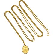 French Gold Filled FIX Virgin Mary on Long Snake Chain Necklace