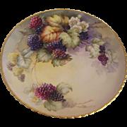 Willets Belleek Hand Painted Berries Plate
