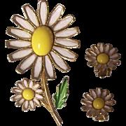Weiss Enamel Daisy Brooch & Earrings Set