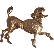 Darling Prancing French Poodle Dog Brooch in Gold tone