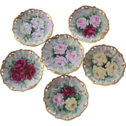 6 Exquisite Old Rosenthal Roses Hand Painted Plates Bavaria
