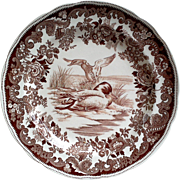 Copeland Spode Mallard Duck Brown Transferware Plate ~ #20 - Red Tag Sale Item