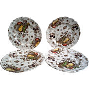 "SET OF 4 ""Autumn's Delight Side Plates ~ Johnson Brothers"