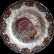 Johnson Brothers ~ Autumn Monarch Pattern ~ Side Plate ~ Turkey