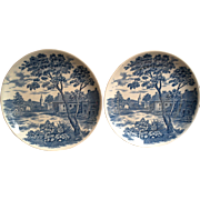 Set of 2 Blue Transferware Dinner/Cabinet Plates