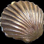 Sea Shell Pill Box  CLEARANCe