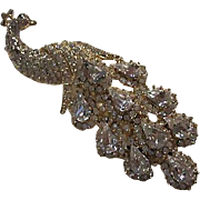 Gorgeous Bird of Paradise Figural Clear Swarovski Crystal Rhinestone Vintage Statement Brooch Pin