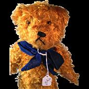 Golden Mohair Vintage Bear