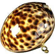 Cowrie Coin Purse China Tiger Shell