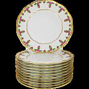 Vintage Set of 10 Porcelain Dinner Plates Charles Ahrenfeldt, France