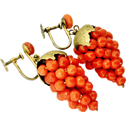 Antique 800 silver gilt salmon coral grape earrings