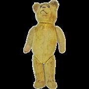 "Antique Bear c. 1910 ~ Mohair & Wood wool ~ 20"""