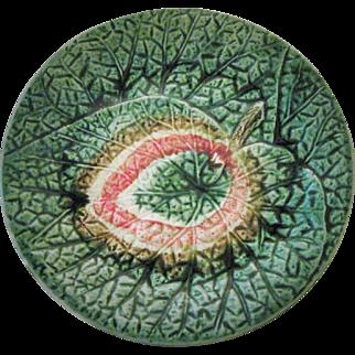 Circa 1880 English Majolica Begonia Plate