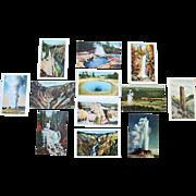 12 Vintage  Yellowstone National Park Postcards