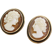 Cameo Stud Earrings | 14K Yellow Gold Shell | Vintage Carved Oval