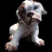 English Bull Dog Figure