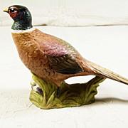"""""""Aynsley""""  Hand Painted Pheasant"""