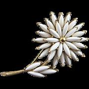 White Trifari Chrysanthemum Brooch