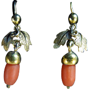 Victorian Coral and Gold-filled Acorn Earrings