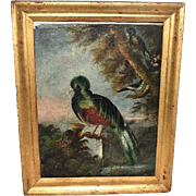 Antique Folk Art Oil Painting of Birds Colorful 19th Century Gilt Framed