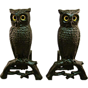 C.1880's Andirons Owl AUTHENTIC Cast Iron Glass Eyes Boston
