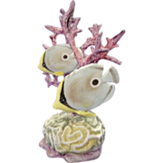 Royal Worcester Four Eyed Fish Tropical Fish #RW3573