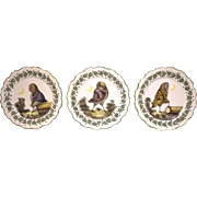 Trio of Whimsical Hand Painted Italian Owl Plates