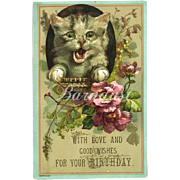 Embossed Cat & Roses, Early Birthday Card