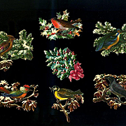 Winter Birds in Holly, Pine Branches Victorian Die Cuts  #237